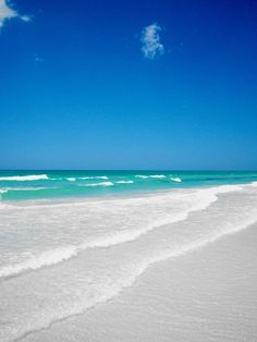 Tropical Beach Resorts in Sarasota and Siesta Key FL is a vacation paradise on the beach voted number one in the entire USA. Sarasota Florida, Sarasota Beach, Siesta Key Florida, Siesta Key Beach, Florida Vacation, Florida Travel, Florida Beaches, Vacation Spots, Clearwater Florida