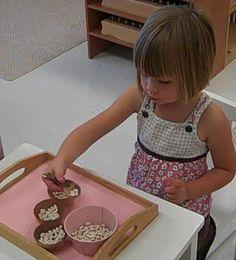 Image result for practical life montessori ideas