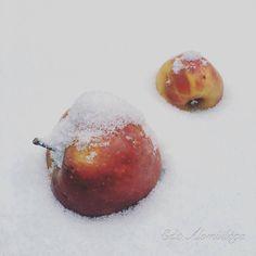 almák...