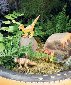 Dinosaur garden for our little ones. Add rocks, moss, ferns, maybe even a volcano!