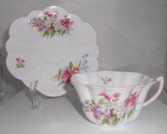 Shelley Stocks Tea Cup & Saucer Rare Stratford Shape #13428 #Shelley