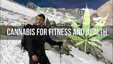 Cannabidiol Oil | Is Cannabis a Way to Better Health and Fitness | CBD O...