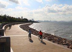 shenzhen bay park cycling