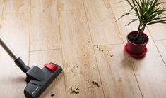 Como limpar piso laminado - ZAP em Casa