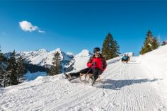 Sledding © Atelier Mamco Entlebucher, Am Meer, Winter Fun, Sled, Mount Everest, Mountains, Travel, Mont Blanc, Atelier