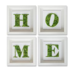 4-Piece Moss Home Wall Decor Set, Oliver Gal | Joss & Main