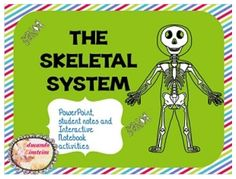 """FREE SCIENCE LESSON - """"Skeletal System PowerPoint, Notes, and Interactive Notebook Activities FREEBIE"""" - Go to The Best of Teacher Entrepreneurs for this and hundreds of free lessons. 3rd - 5th Grade #FreeLesson #Science http://www.thebestofteacherentrepreneurs.net/2015/01/free-science-lesson-skeletal-system.html"""