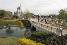 Magic Kingdom Central Plaza Update 1 | Flickr - Photo Sharing!