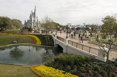 Magic Kingdom Central Plaza Update 1 | Flickr - Photo Sharing!
