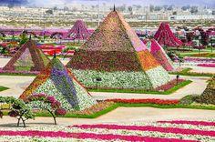 Dubai Miracle Garden (Dubai/ United Arab Emirates): curious-places.bl...
