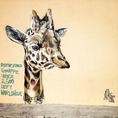 "Louis ""Masai"" Michel - Rothschild Giraffe, #streetart in Cape Town"