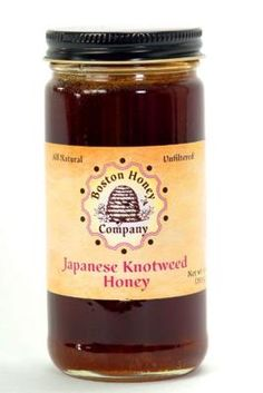 Japanese Knotweed honey, Boston Honey Company: This late season honey is gathered from large, bamboo-like plants. The resulting nectar is dark, nutty and pairs well with cheeses and breads.