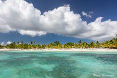 Saona Island #DominicanRepublic #beach #caribbean