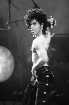 Prince and his sexy self●