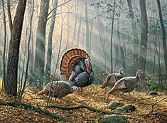 Woodland Wild Turkey Cross Stitch Pattern***L@@K***$4.95 CLICK VISIT TO SEE PATTERN FORSALE