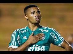 fique por dentro : Você sabe tudo sobre o título brasileiro do Palmei...
