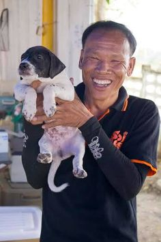 Our Animal Rescue Officers are absolutely vital in the rescue and treatment of sick and injured animals. Between them, they have saved the lives of thousands of dogs and cats. https://www.facebook.com/SoiDogPageInEnglish/photos/a.846538345387902.1073742979.108625789179165/846538448721225/?type=1&theater