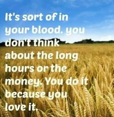 It's sort of in your blood, you don't think about the long hours or the money. You do it because you love it. <3