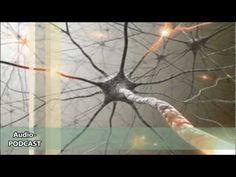 ▶ (33) Intelligenz - Der Blick ins Gehirn (Psychologie, Hirnforschung, Neurowissenschaft) - YouTube