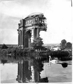 San Fancisco Architecture : San Francisco, CA—-Saving the Palace of Fine Arts, meant partially demolishing… Palace Of Fine Arts, Museum Of Fine Arts, San Francisco California, San Francisco Bay, Famous Structures, San Francisco Earthquake, California History, Southern California, Le Palais