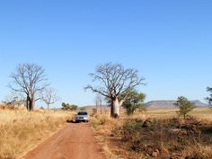 Driving through the Kimberley, Western #Australia Western Australia, Travel Inspiration, Westerns, Places To Visit, Billabong, Country Roads, Tours, Explore, Adventure