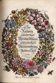 "Maria Sibylla Merian: Frontispiece of ""The Wondrous Metamorphosis of the Caterpillar, and its Strange Nourishment by Flowers"" (1679)"
