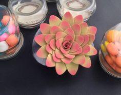 Felt succulent plant arrangement by miasole on Etsy