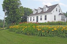 Original Piper Hill farm house built by the first Piper on the hill in the early 1800's was completely restored in 1997. Offering charm and beauty throughout every room, many with marvelous views of Magic Mountain rising beyond conserved pasture across the road, the summer home of Holsteins. Each room offers warmth and comfort with wide plank hardwood floors, beamed ceilings, granite stone fireplace and authentic built-ins. The first floor master suite and two guest bedrooms and bath u...