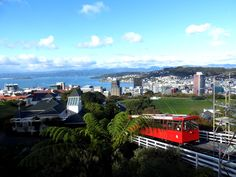 Museums, Views and More Hobbiting Around in Windy Wellington