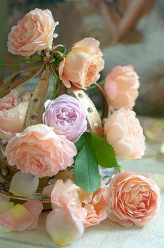 Wedding Flower-David Austin Roses  
