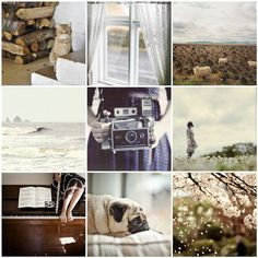 back to work. Clover Field, Photo Tiles, Stormy Sea, Back To Work, Slow Living, Absolutely Gorgeous, Mosaic, Photography, Color