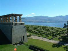 Mission Hill Winery, Kelowna. So yummy!!