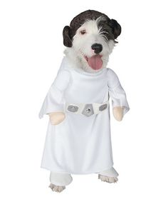 Look at this #zulilyfind! Princess Leia Pet Costume #zulilyfinds