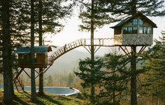 Treehouse & Skate Bowl Living in the Woods by Foster Huntington  I want to live in the woods, too. I'm not sure I can design a treehouse fort type situation with skate bowl and hot tub beneath, but this feels very West Marin and pretty on point to living in the woods creatively. (If you live in the Bay, or have taken mushrooms and listened to the Dead, you know the West Marin reference). Foster Huntington created this treehouse with friends