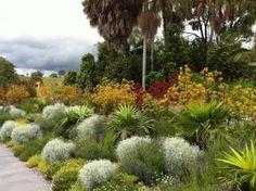 1000 images about courtyard garden on pinterest native gardens australian garden and coastal gardens
