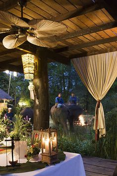 Ride elephants, eat dinner in the jungle and SO much more at the all-inclusive Anantara Golden Triangle Elephant Camp & Resort in Thailand Design Hotel, Safari Adventure, Adventure Travel, Adventure Photos, Elephant Camp, Bali, Out Of Africa, Kenya Africa, South Africa