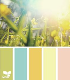 household colors
