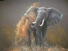 pastel painting african wildlife. I want to master using pastels. So hard to do.