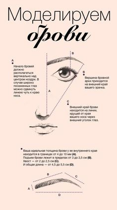 Eye Makeup Tips and Advice Beauty Care, Beauty Makeup, Hair Beauty, Makeup Revolution, Makeup Atelier, Tips Belleza, Permanent Makeup, Eyebrow Makeup, Face Care