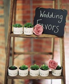 Give out cute succulent planters as wedding favors | JoPhoto