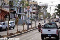 DE LA ZANJA : En Santiago Ambientalistas reaccionan por la siemb...