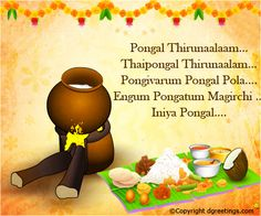 The 22 best pongal card images on pinterest greeting cards happy happy pongal m4hsunfo