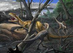 Neovenator- Cretaceous-European Dinosaurs
