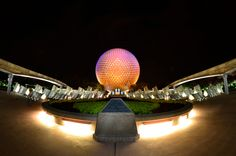Spaceship Earth at Night with Light Painting in the foreground!  Next time I take this shot I will need to freeze a Monorail going by! www.marclorenzo.zenfolio.com
