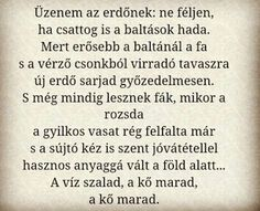 Wass Albert Üzenet haza Painters, Poems, Writer, Math Equations, Quotes, Quotations, Poetry, Writers, Verses