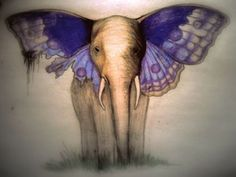 Elephant S Butterflies, Elephant Butterfly Tattoo, Butterflies Wouldn'T, Elephant Wings, Elephant Spirit, Loved Elephants, Water For Elephants, ...