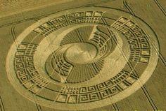 Photos: Crazy Crop Circles - chicagotribune.com