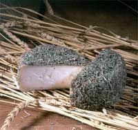 Andalucia Queso Sierra de Cazorla Se elabora a partir de leche pasteurizada de cabra.Cuando están listos para el consumo se envuelven en plantas aromáticas que les da un aspecto peculiar y gran aroma.