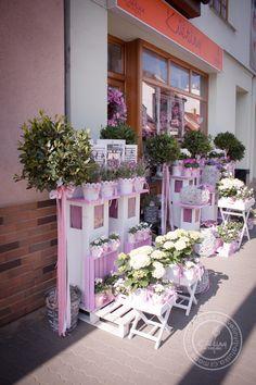 Kolekce   Letní kolekce   Květiny Petr Matuška Brno - dekorace, floristika, řezané květiny, svatební kytice