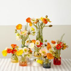Poppies Popping with Color DIY - Tulipina Wedding Flower Arrangements, Floral Arrangements, Wedding Bouquets, Poppy Flower Bouquet, Poppy Flowers, Diy Flowers, Wedding Table, Diy Wedding, Floral Wedding